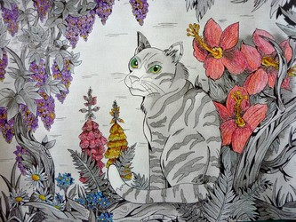Chat & fantaisie florale
