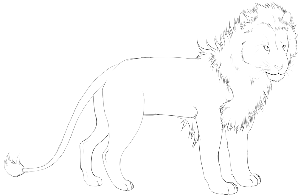 lion male linart