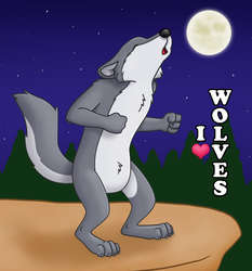 I Heart Wolves Button