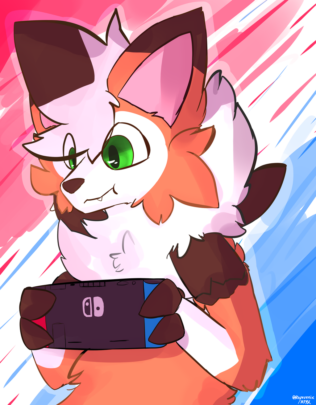 Most recent image: Switch doggo