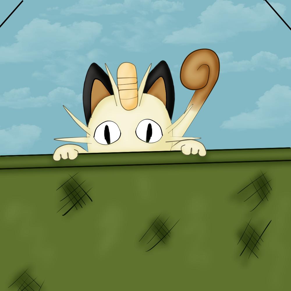 Curious Meowth
