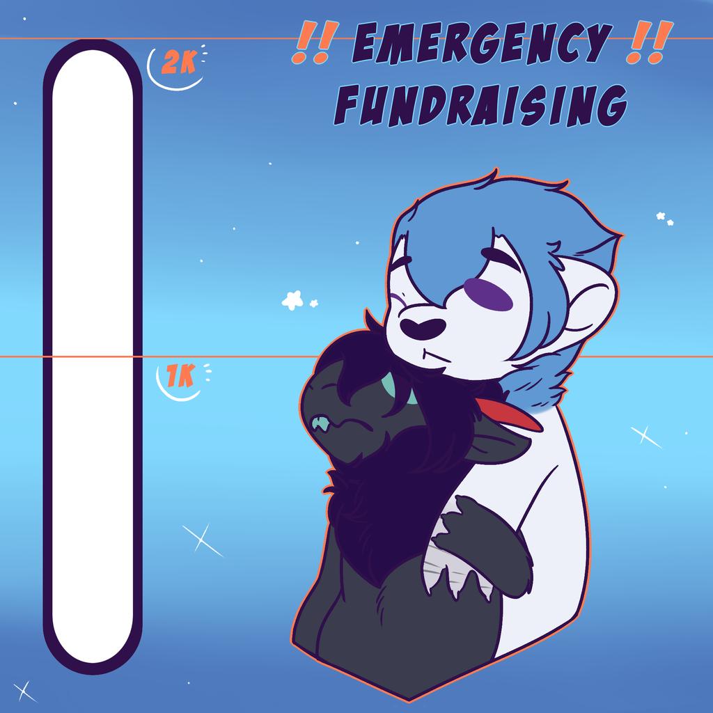 [EMERGENCY FUNDRAISING] Please help my partner!!