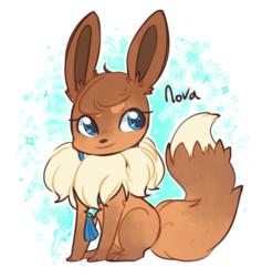 Nova Sitting
