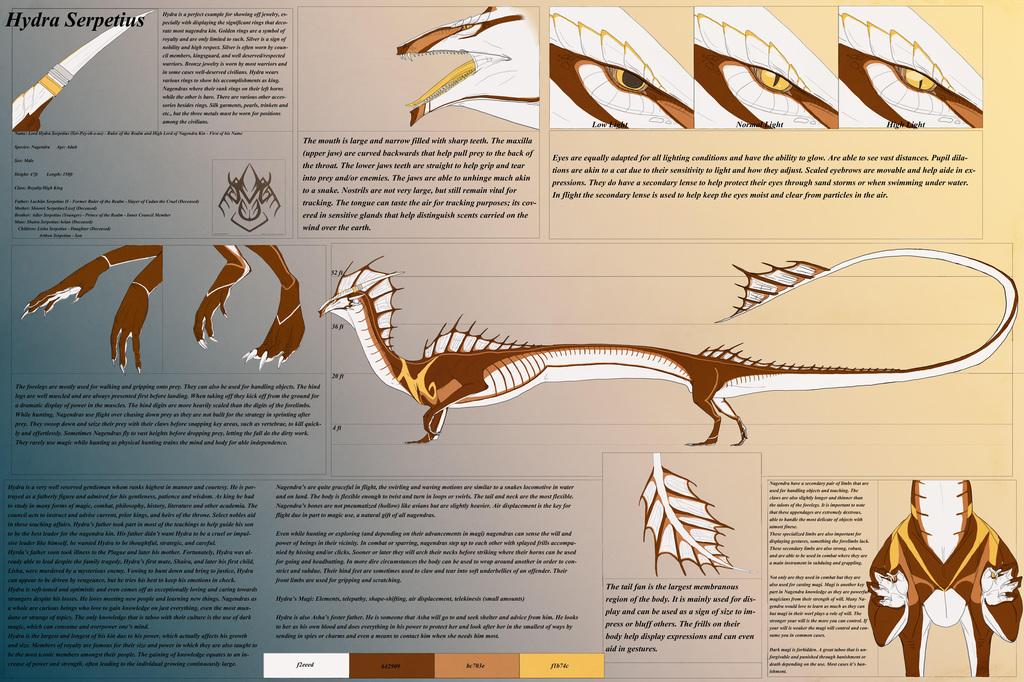 Hydra Reference V1