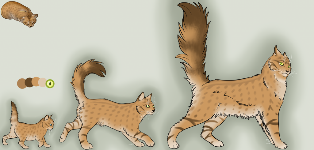 Most recent image: *sold* Tan Kitten Adoptable