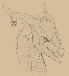 dragon design 1