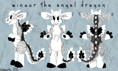 Winsor the Angel Dragon plans