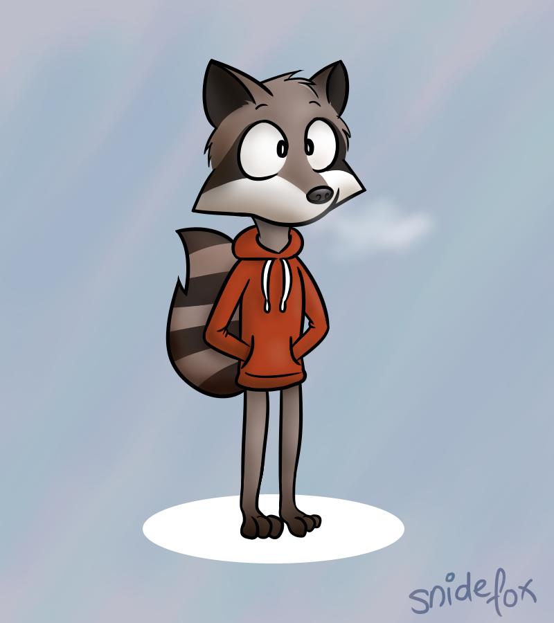 Hoodie Raccoon