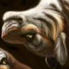 avatar of Pahri