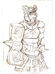 Gumbo Paladin Warrior thing