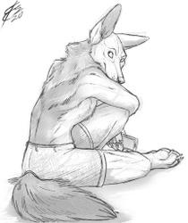Jackal Sketch Commission