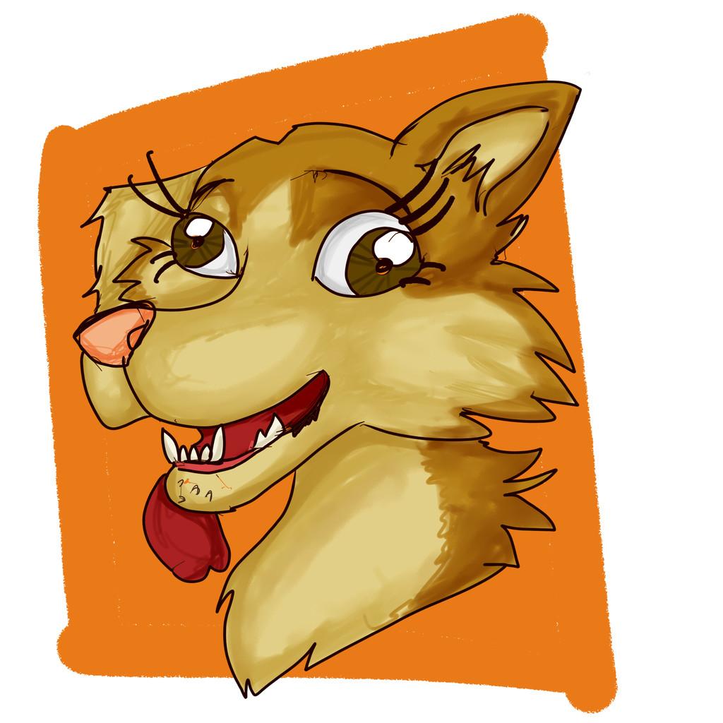 Derpy dog