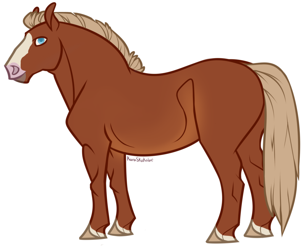 Most recent image: Simcoe or Horse Gordon - C/o Kara Skakalac
