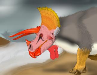 Parakeet-Boar
