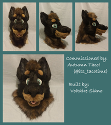 Autumn's Completed Head!