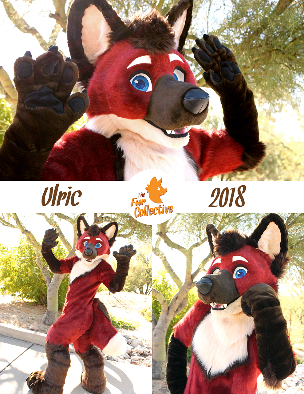 Ulric the Maned Wolf!
