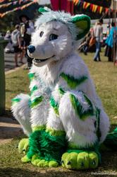 Ironfest 2018: Fox Cuteness