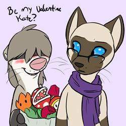 FFHW: Ferret Valentines