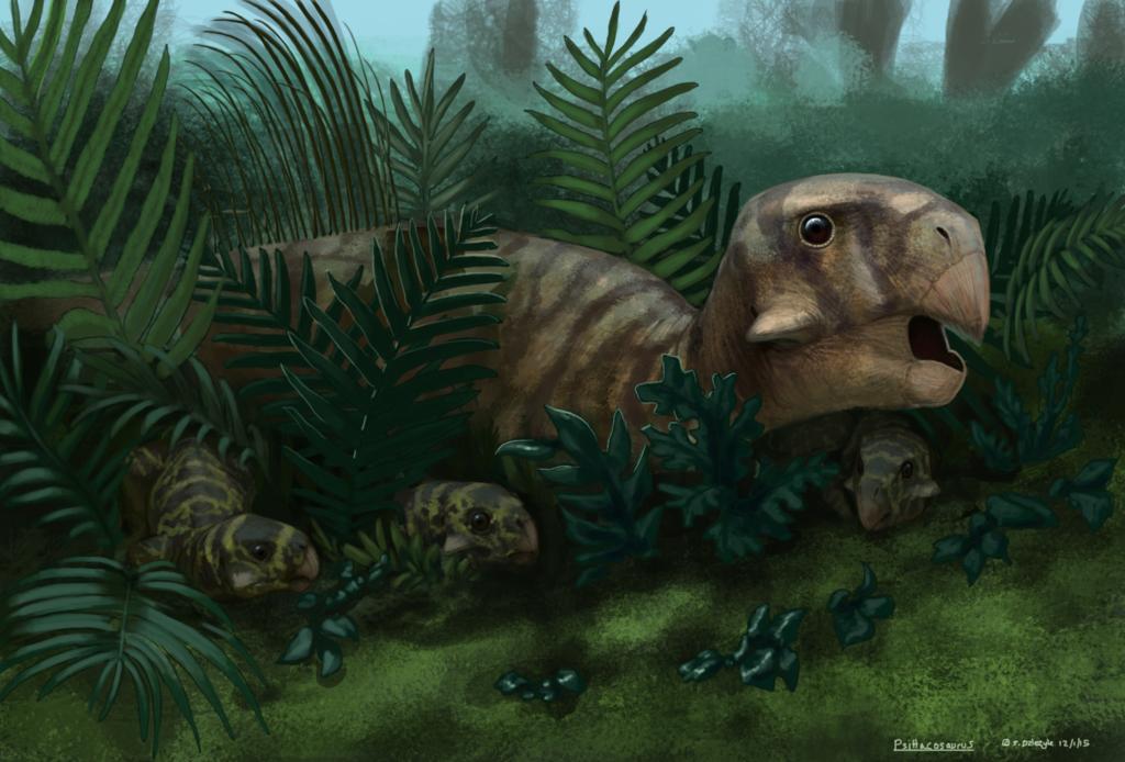 Dinovember - Finale - Psittacosaurus