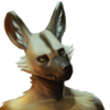 Avatar for ApricotJackal