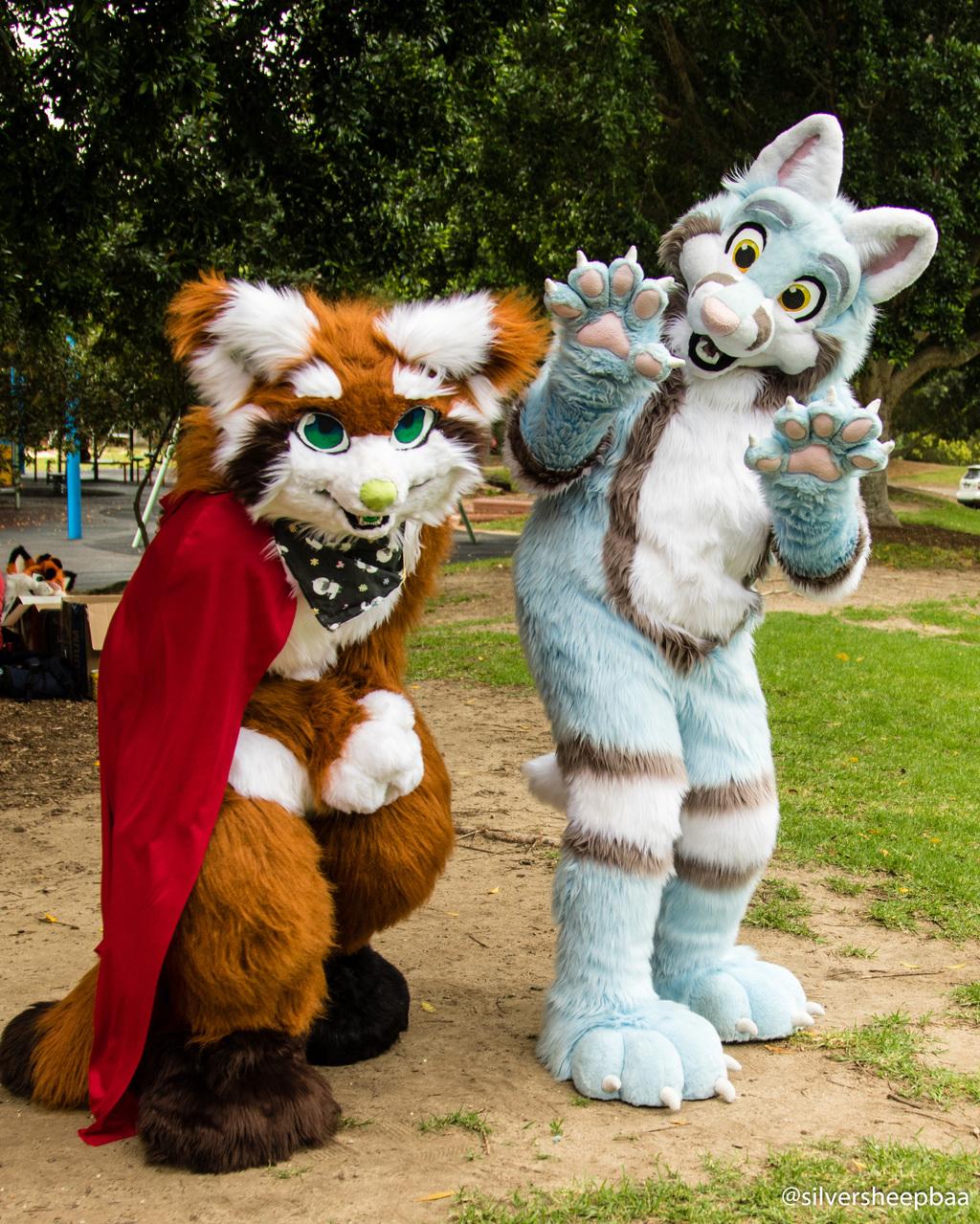 DecemFUR 2017: Panda and Fox