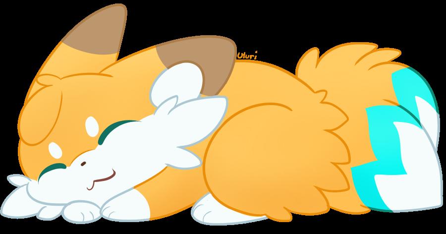 Sleepy Luca
