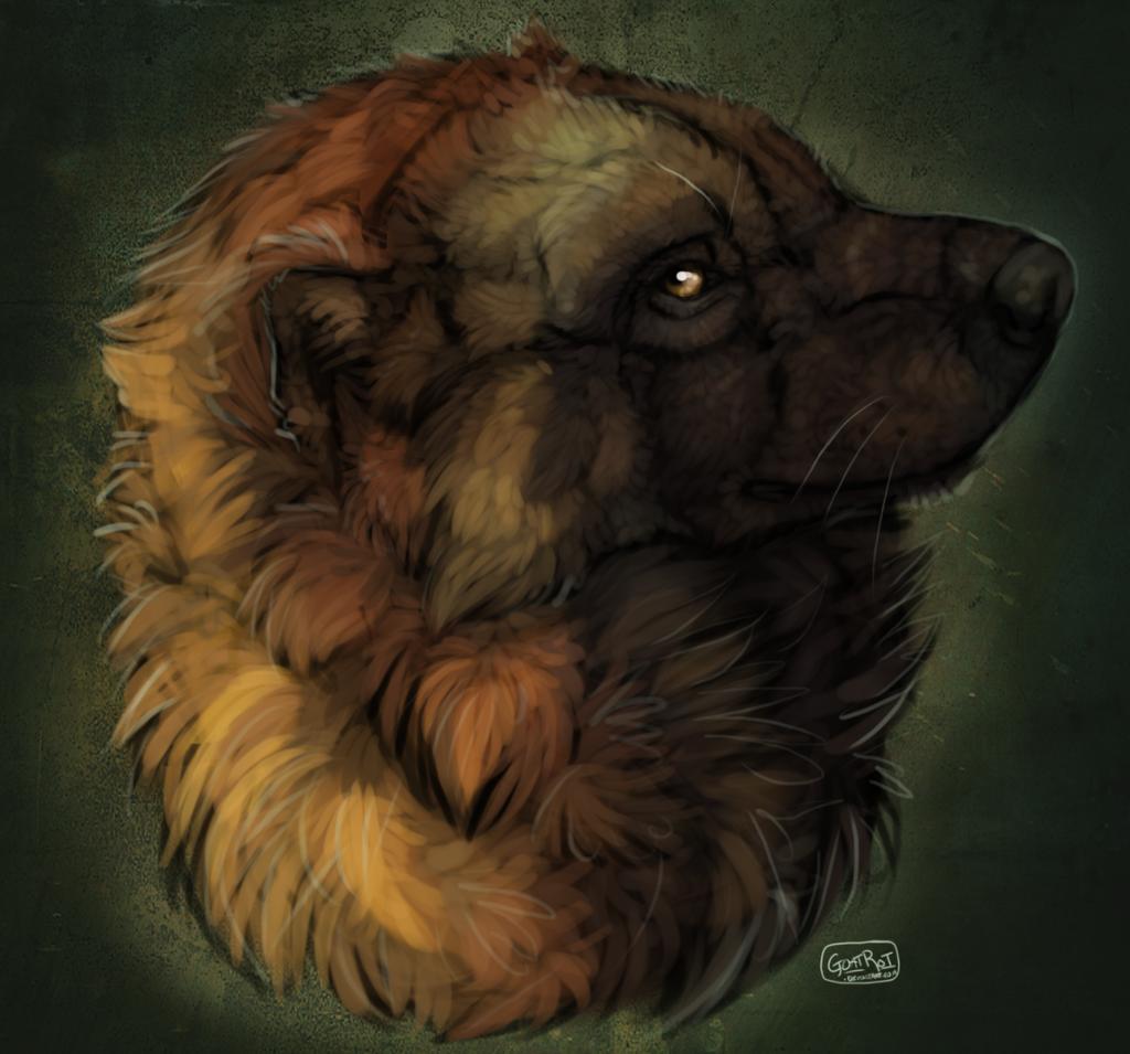 Portrait by blighthound