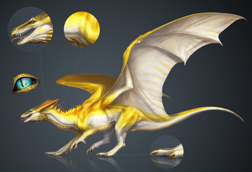 [ OPEN ADOPT ] Dragon of the Sun