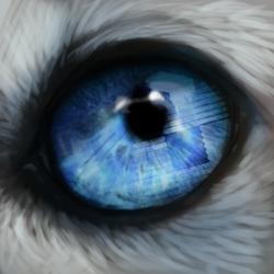 COMMISSION: Mondeis - Eyecon