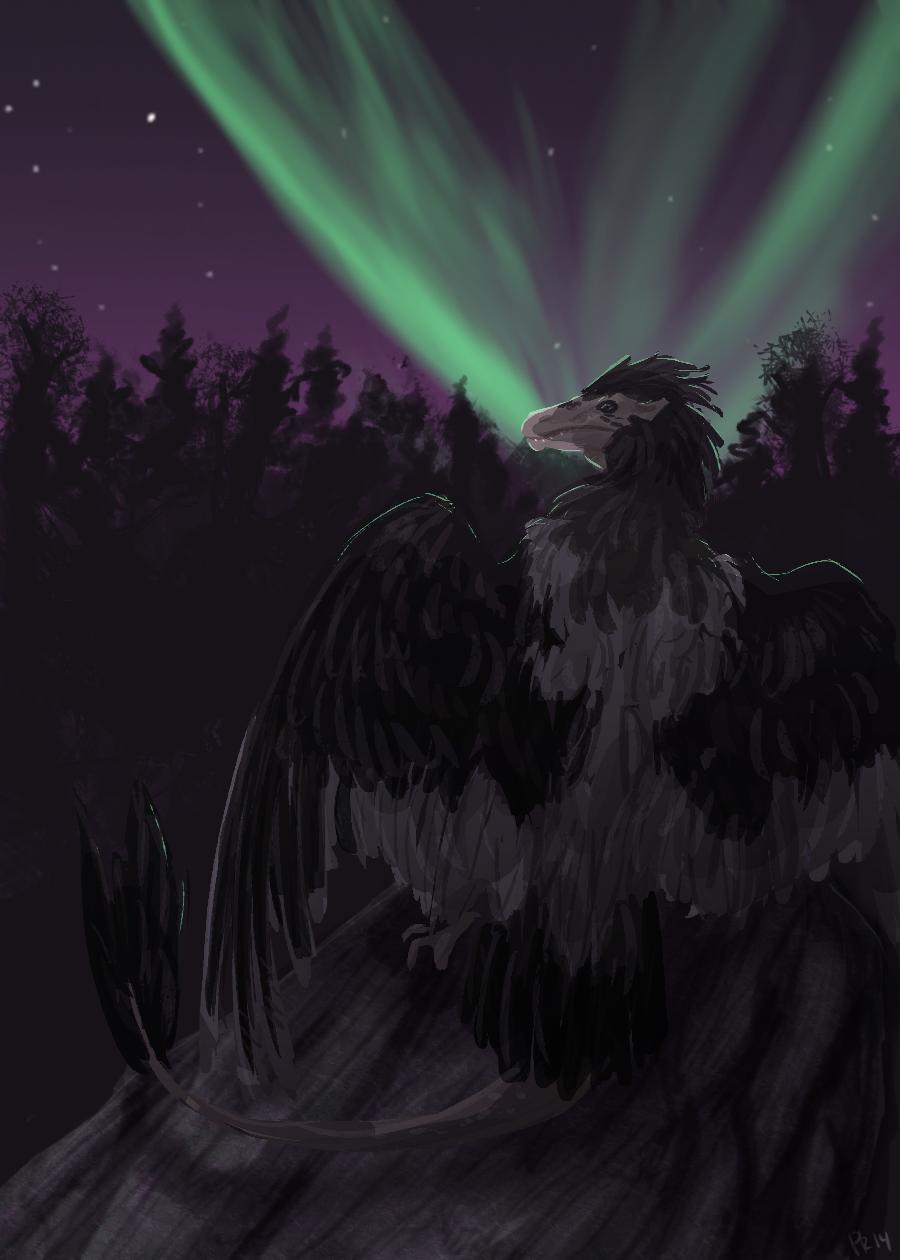 SaDS: Northern Lights