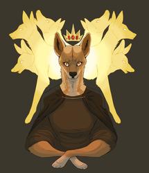 Dingo lord