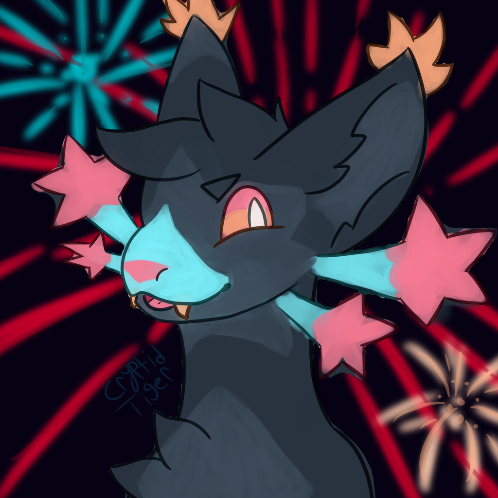 Most recent image: Fireworks