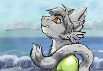 Curious Seaside (FARR)