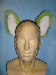 Poprock ears