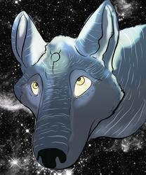 Stria Wolf