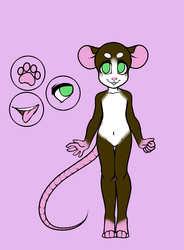 Sale Only Rat