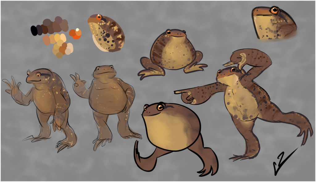 Thinking about toads