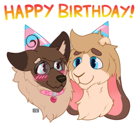 Birthday Pup 🎉