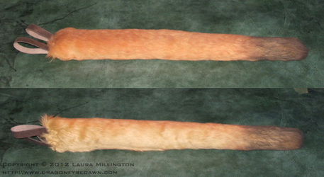 Realistic Cougar Tail