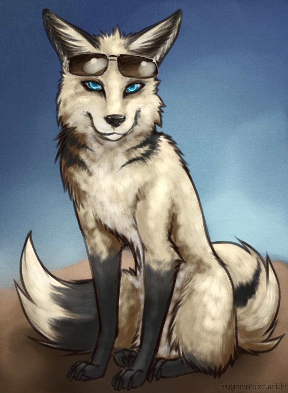 Feral Fox - Dash