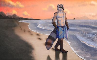 Beach Bandit by Tsaiwolf