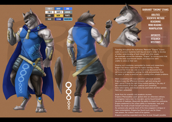 Enigma's Reference Sheet (Commission)