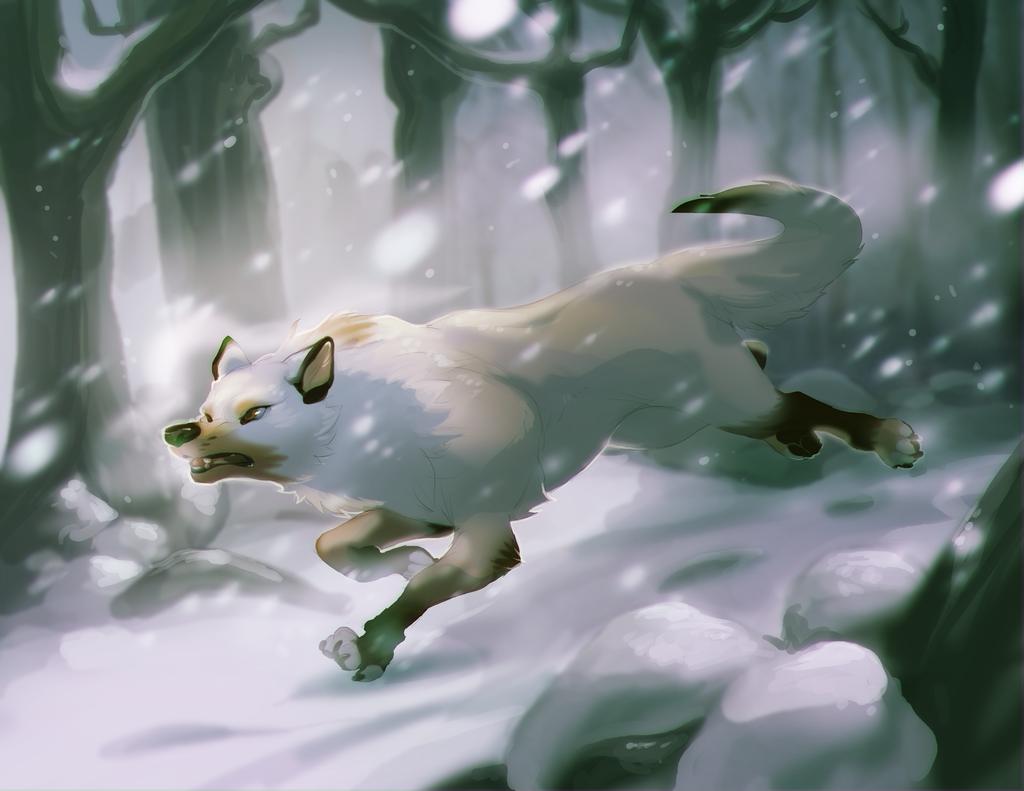 The White Path by Skulldog