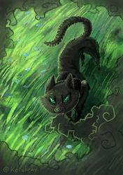 Shadow Forest illustration - 1