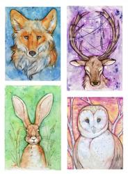 Spirit Animals - Collection