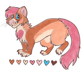 ferret adoptable CLOSED