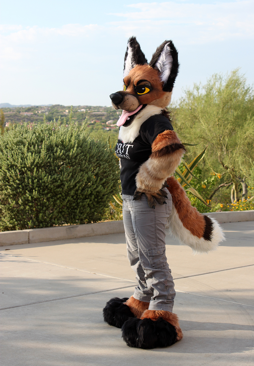 Canine Partial Preview