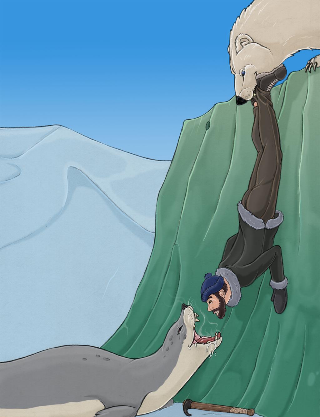 Seal hunt 2 (color)