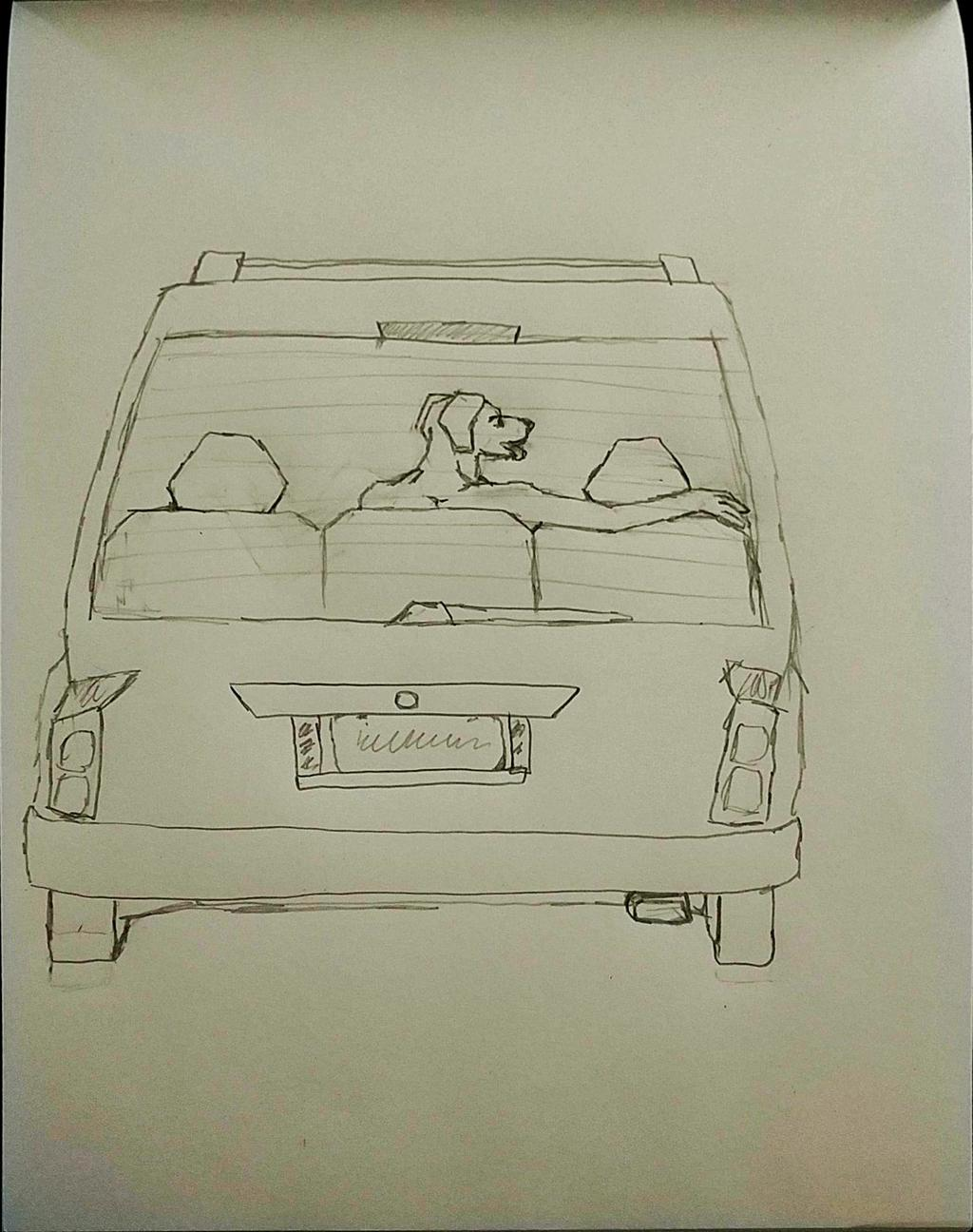 Dog in back of SUV
