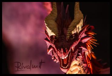 Companion Large dragon